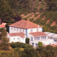 Big Mansion & Property - Obidos - Portugal