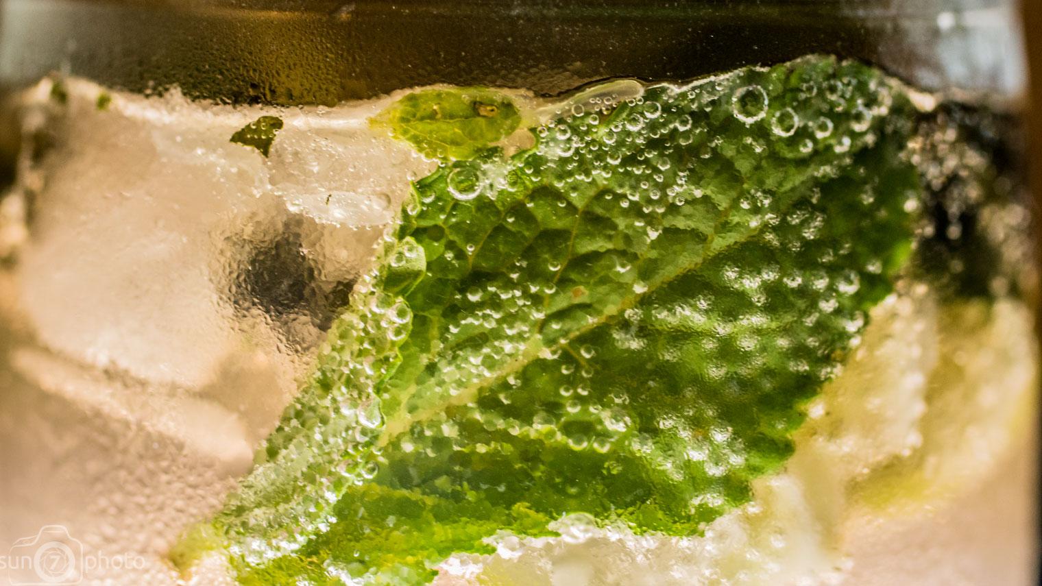 Fresh Mint Leaf & Sparkling Water