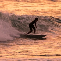 Sunset Surfer - Arènes Cros - La Ciotat - France