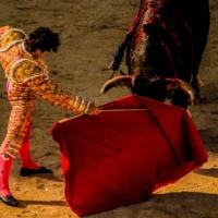 A la cincos de la tarde 6 - Feria du Riz - Arles - France