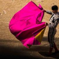 A la cincos de la tarde - Feria du Riz - Arles - France