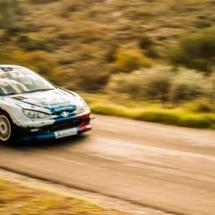 Peugeot 206 Maxi N°21- André - Burzio - Les Baïsses - Rallye du Mistral - France