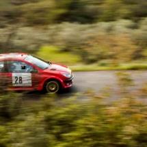 Peugeot 206 - N°28 - Guillaume - Buron - Les Baïsses - Rallye du Mistral - France
