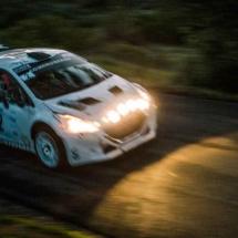 Peugeot 208 T16 - N°2 - Les Baïsses - Rallye du Mistral - France