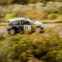 Renault Clio - N°31 - Pollina - Basso - Les Baïsses - Rallye du Mistral - France