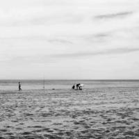 At the beach - Gruissan - France