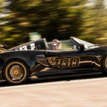 Lotus N°13 - Mont Ventoux - France