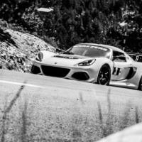 Lotus N°3 - Mont Ventoux - France